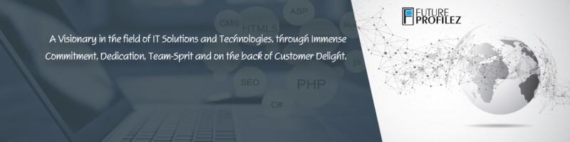 Future Profilez Web Design (UI/UX) India