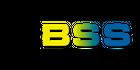 Bright Soft Systems LLC Logo